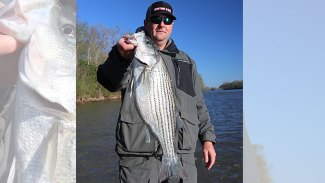 Catch Wateree River stripers in current breaks