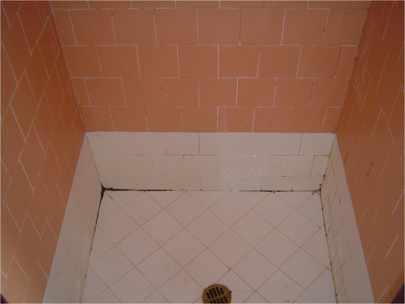 premier grout repair and regrout