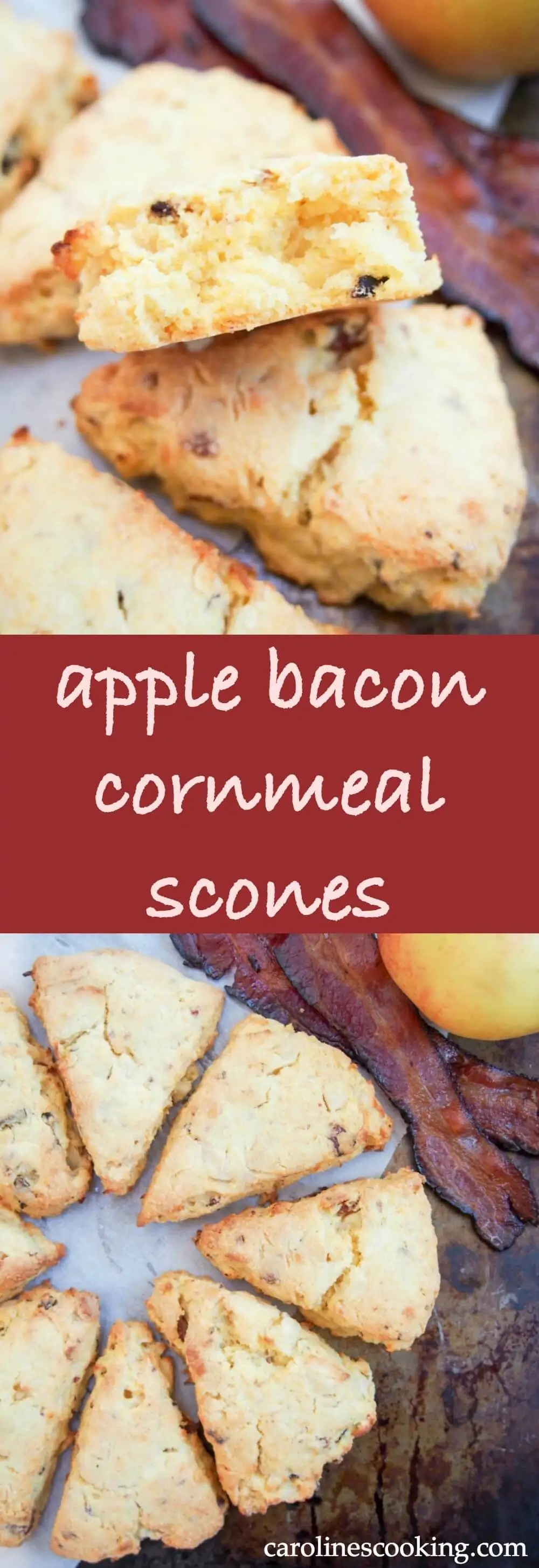 These apple and bacon cornmeal scones are moist and delicious, with a wonderful sweet-savory flavor combination. Such a tasty snack, you'll be back for more.