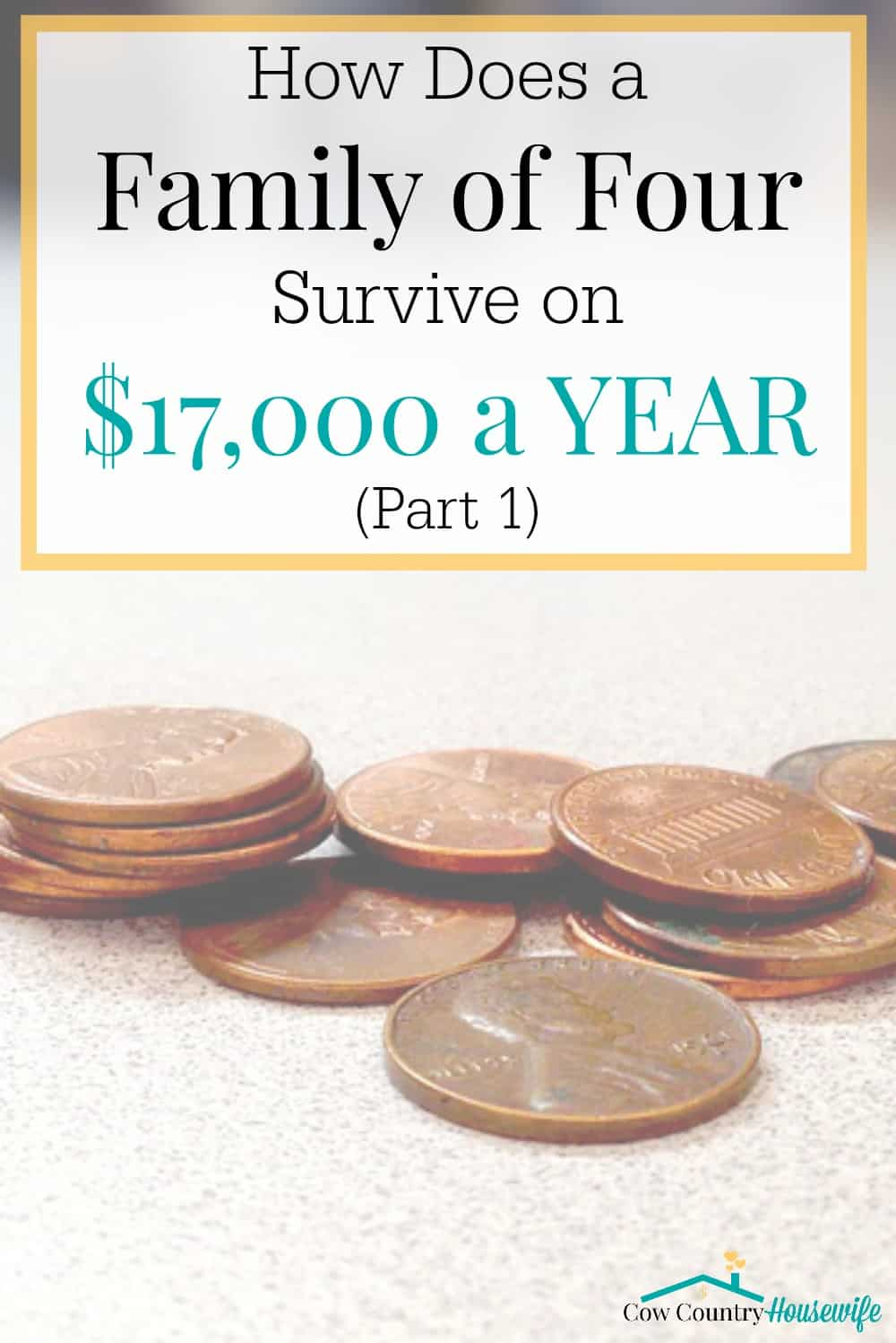 How Does a Family of Four Survive on $17,000 a YEAR? It wasn't easy, but we did it. AND still managed to buy 2 cars, a house, and build up a savings account. Here's how we did it...