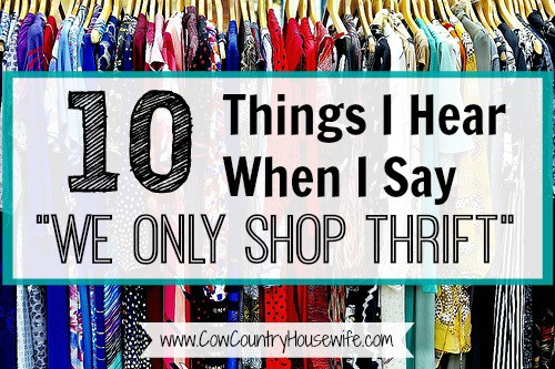 10 Things I Hear When I Say We ONLY Shop Thrift - Cow Country Housewife