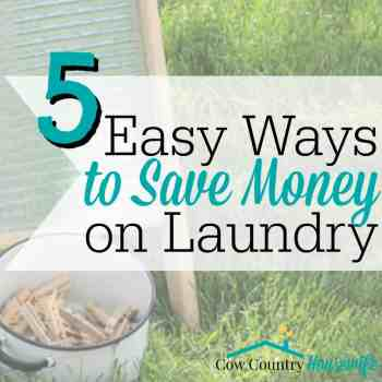 The 5 best and easiest laundry tips to save you and your family lots of money AND help you get rid of chemicals in your home! You can even start them TODAY!