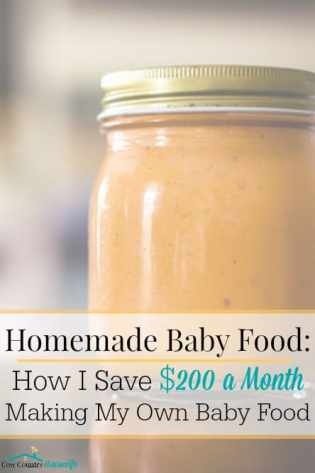 Homemade Baby Food How I Save 200 A Month Making My Own Baby Food