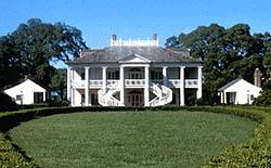 plantation Guest Author History