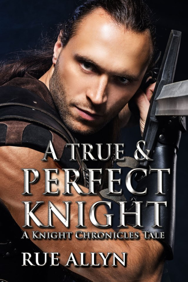 ATrueandPerfectKnight_850 Highlighting Historical