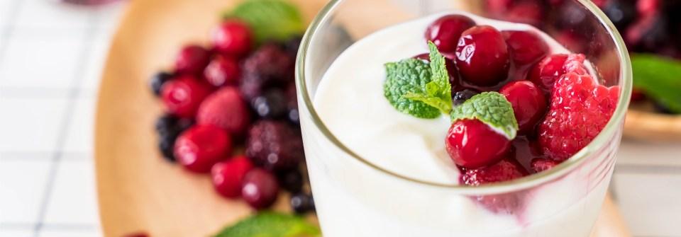 Como cuidar do seu kefir – Parte 2 – Dessorando