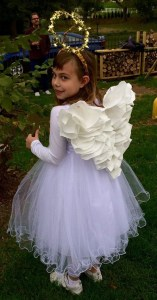 craft angel wings
