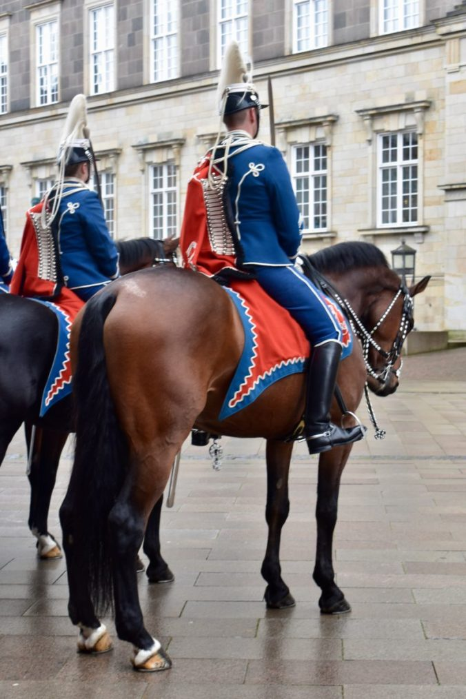 Queen's horses waiting patiently