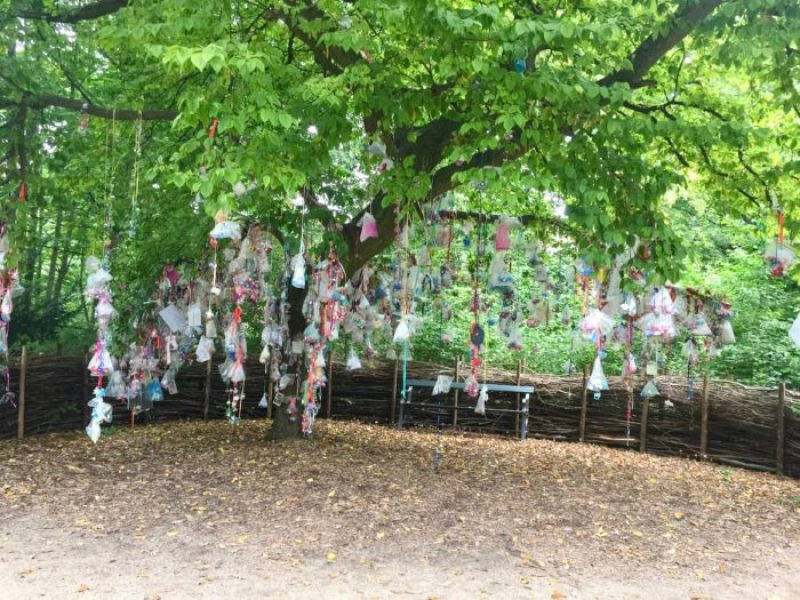 Dummy or pacifier tree in Fredericksburg Have