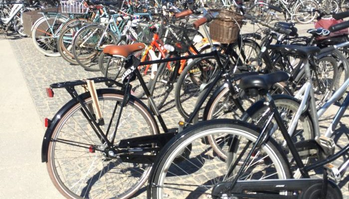 Day Trips from Copenhagen by Bike
