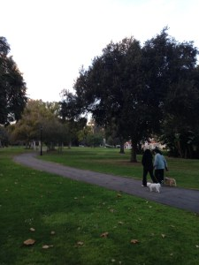 Holmby Park in Holmby Hills in Westwood
