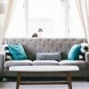 Wohnzimmer Couch Katze