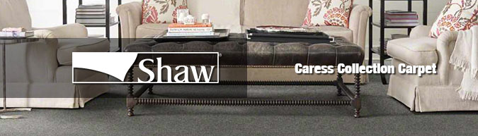 Image result for shaw carpet