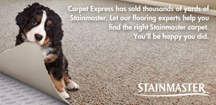 Stainmaster Carpet   Discounted Prices   CarpetExpress com STAINMASTER CARPET