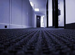 hallway of an office with cubicle walls and open doors