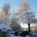 Arnside Knott in the Snow