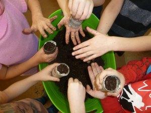 Des élèves aux pouces verts