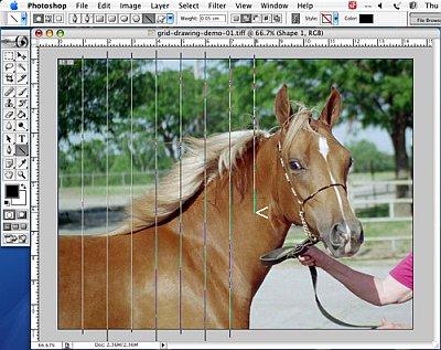 Putting a Drawing Grid on a Digital Photo - Step 5a