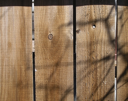 How to Draw Realistic Wood Grain Subject