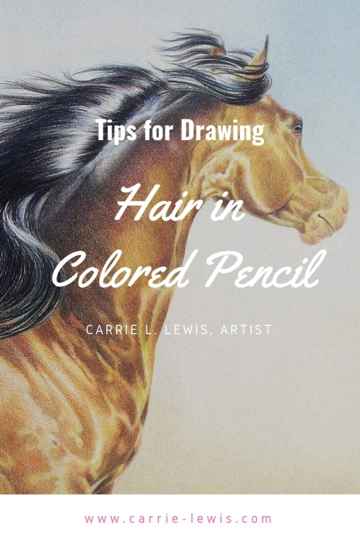 Tips for Drawing Hair in Colored Pencil