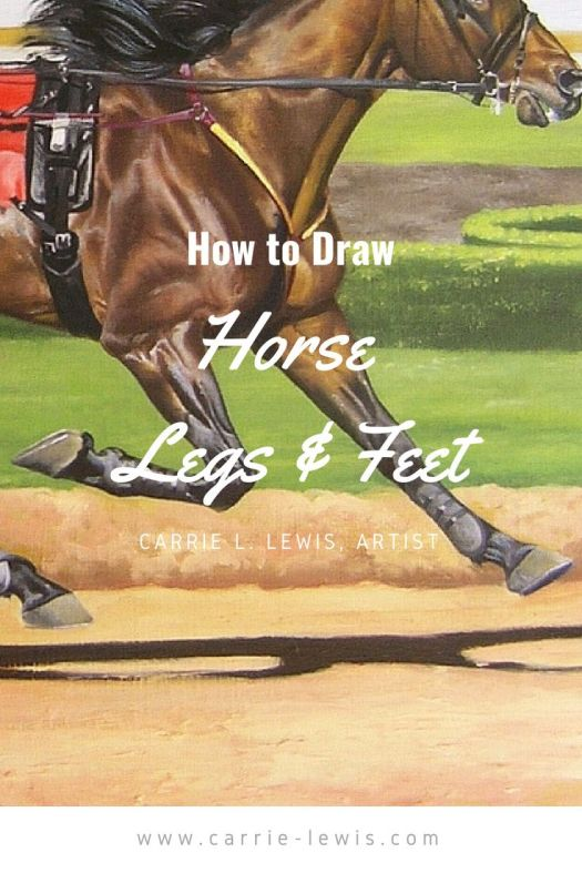 How to Draw Horse Legs and Feet