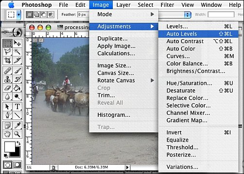 How to Process Digital Reference Photos in Photoshop Step 4a