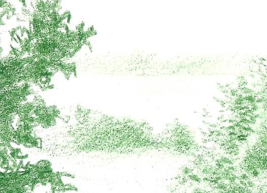 Green Landscape 5