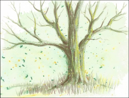 More Fast and Easy Backgrounds for Colored Pencils - Watercolor Shavings