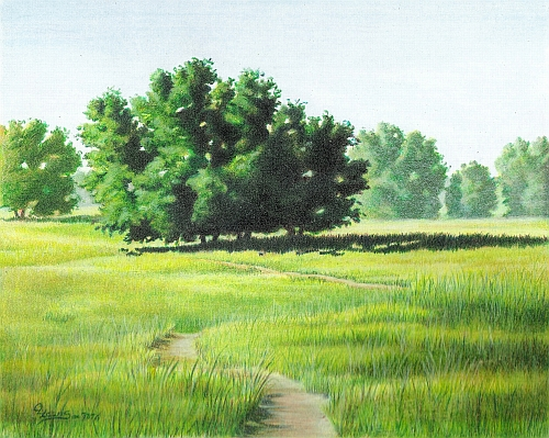 Tips for Drawing Realistic Dirt - Traditional Colored Pencil