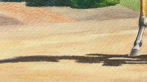 Tips for Drawing Realistic Dirt - Water Soluble Colored Pencils Detail