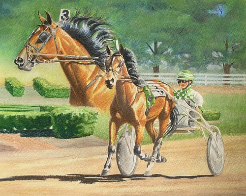 Tips for Drawing Realistic Dirt - Water Soluble Colored Pencils
