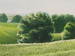 Drawing Natural Looking Landscapes - How to Glaze Color over an Umber Under Painting