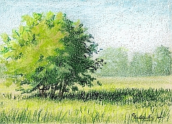 Drawing Natural Looking Landscapes 13 Must Read Articles Carrie