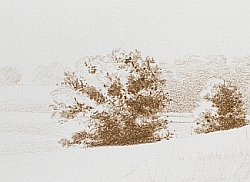 Drawing Natural Looking Landscapes - How to Create an Umber Under Painting