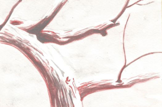 How to Paint a Tree With Snow in Watercolor Pencils - Step 2