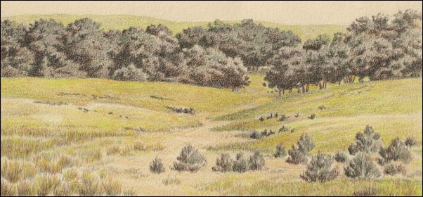 Umber Under Painting - Cloudy Landscape 13