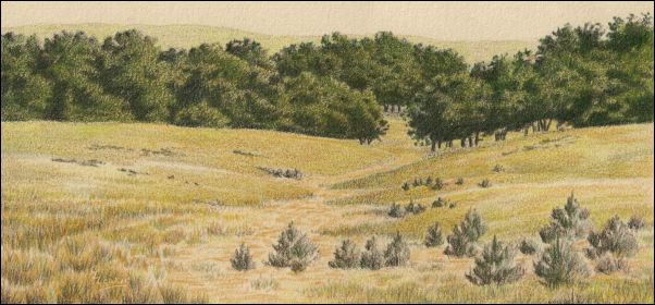 Umber Under Painting - Cloudy Landscape 18