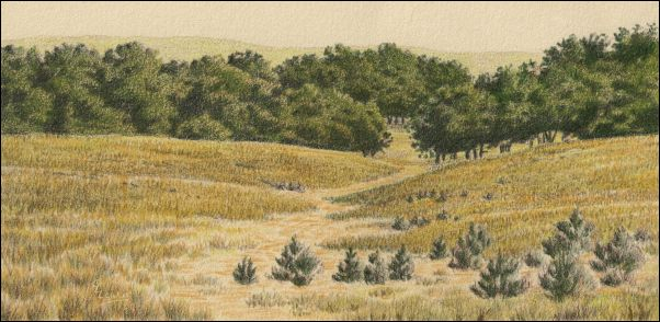 Umber Under Painting - Cloudy Landscape 21