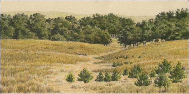 Umber Under Painting - Cloudy Landscape 23