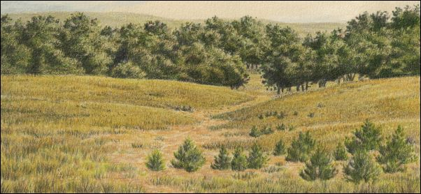 Umber Under Painting - Cloudy Landscape 31