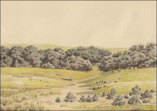 Umber Under Painting Landscape Tutorial - Color Glaze 1