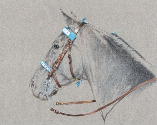 How to Draw Leather - Bridle Finished