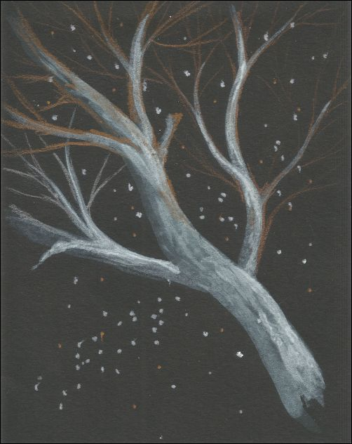 Metallic Colored Pencils on Black Paper 3