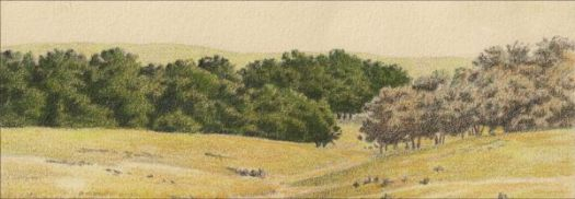 This image has an empty alt attribute; its file name is 25-Drawing-a-Landscape-in-Gray-Light-Sixth-Color.jpg