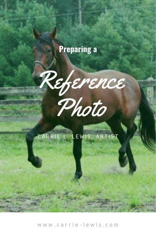 Preparing a Reference Photo for a Portrait