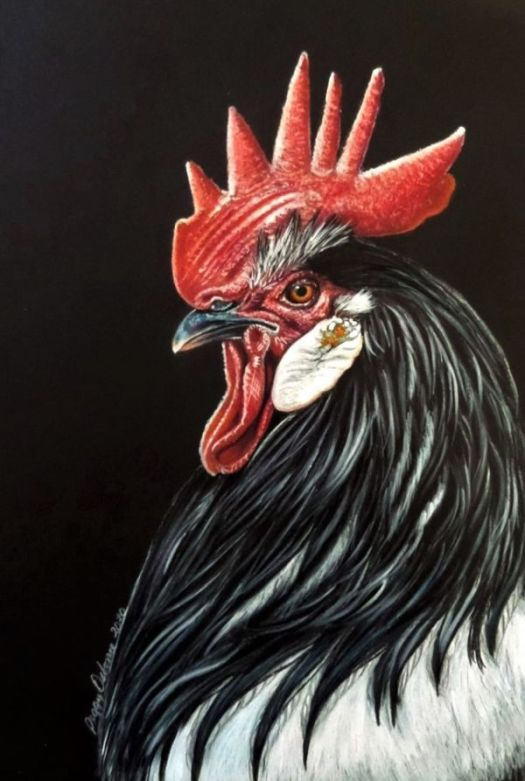 Drawing Vibrant Color on Black Paper - The Finished Drawing
