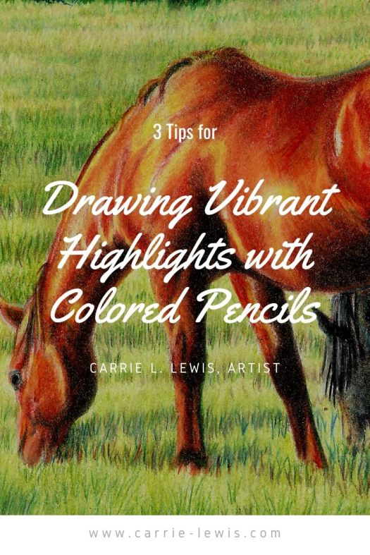 3 Tips for Drawing Vibrant Highlights with Colored Pencils
