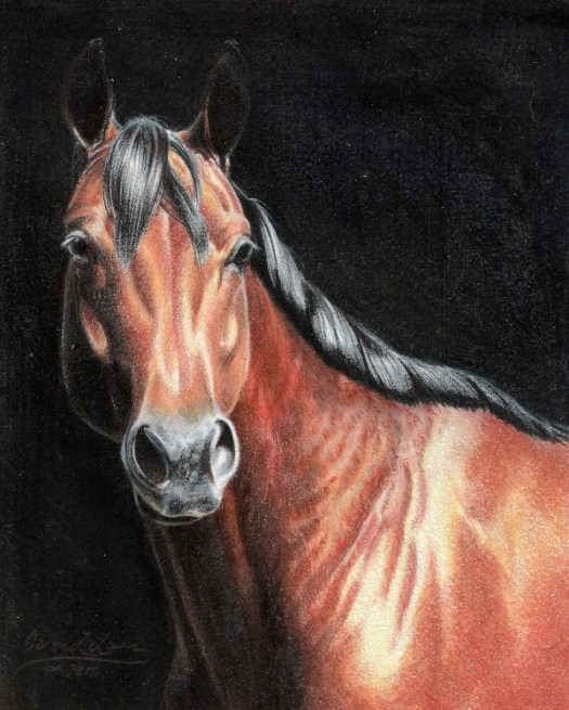 Dark Backgrounds with Colored Pencils