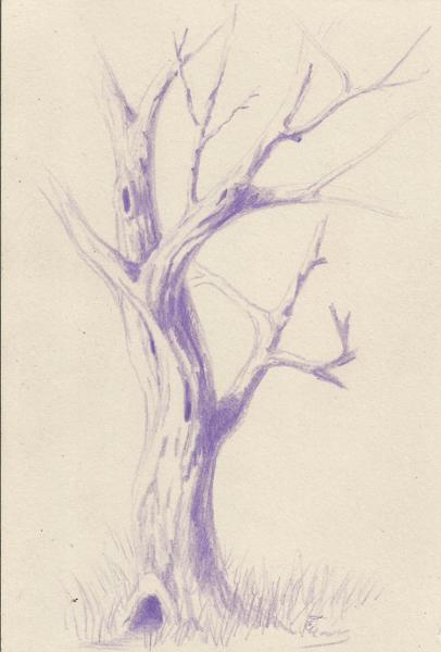 Weekly Sketch Along