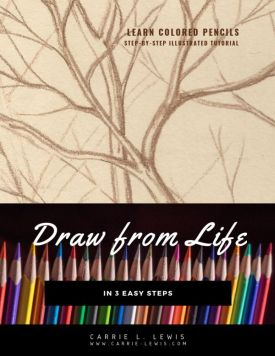 Draw from Life in Three Easy Steps